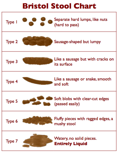 how-to-describe-poo.png