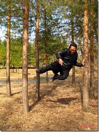blog - kung fu