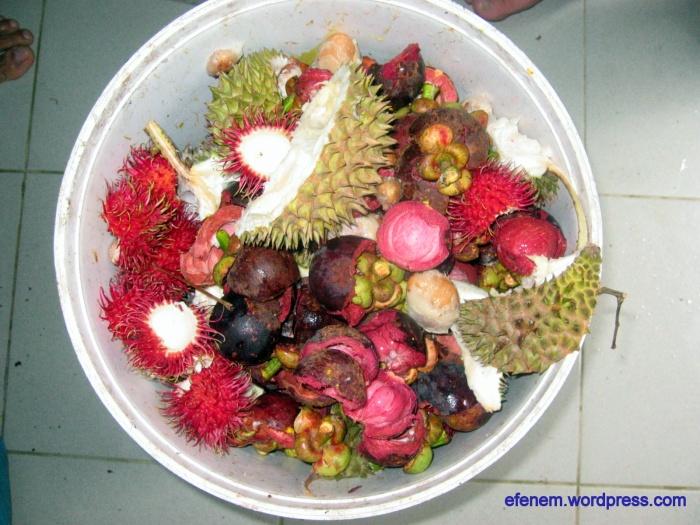 blog - abis makan buah