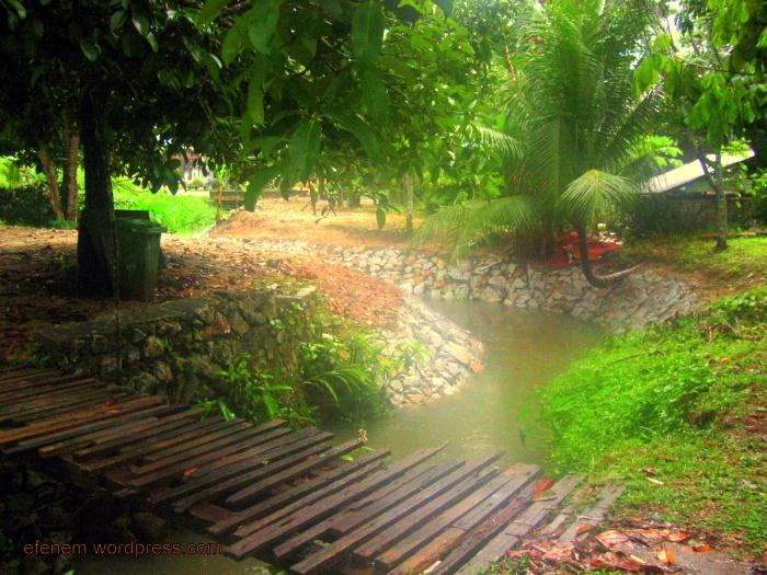 blog - kampung kebun